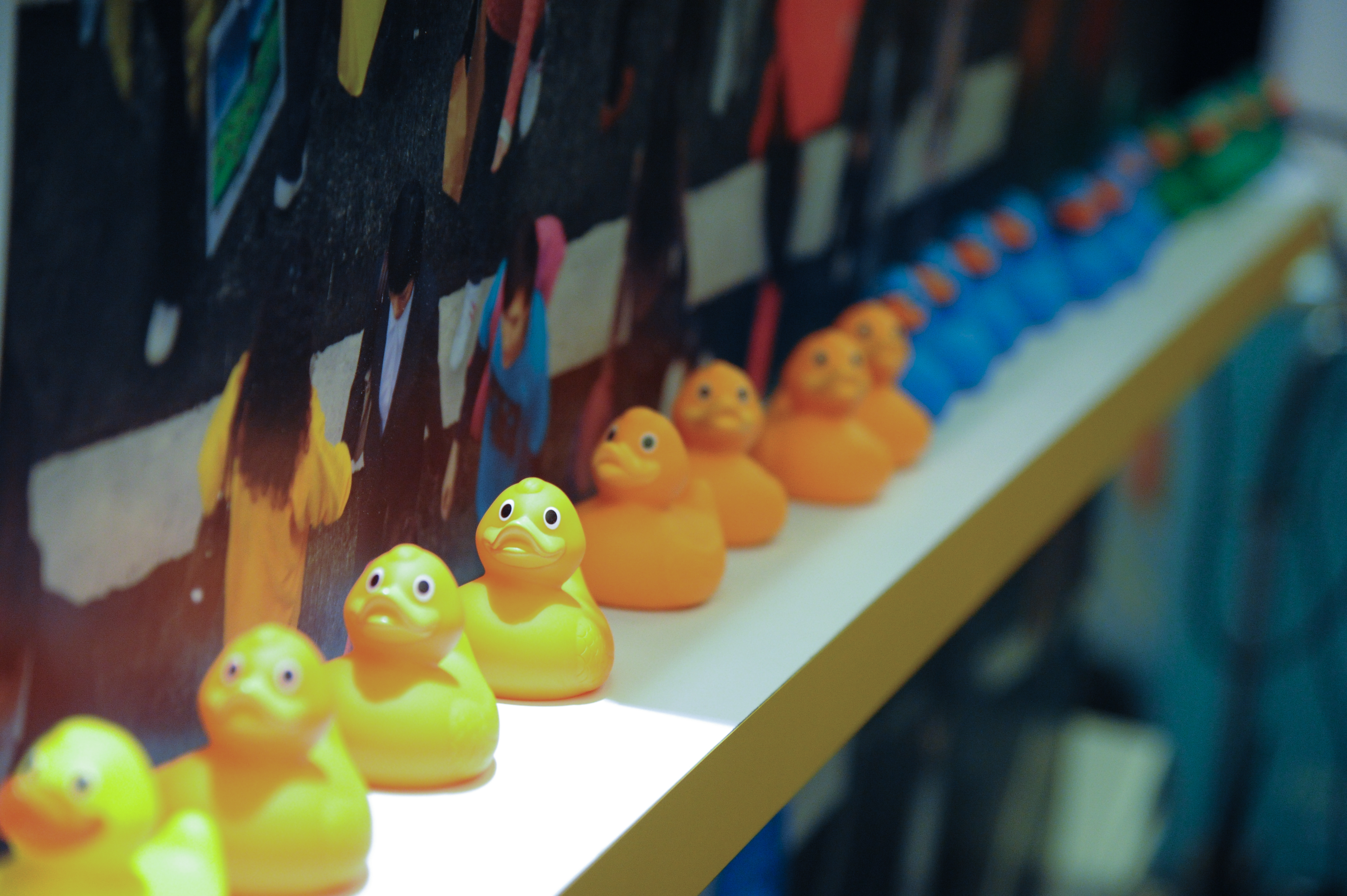 what the duck living in a connected world